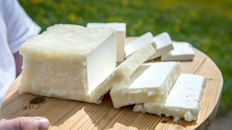 Auch Bloderkäse wird in Zürich probiert werden können. (Bild: Urs Bucher)