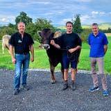 Gabenchef Marcel Müggler, Züchter David Ackermann und die Gabenspender RalphMünger und Yves Münger posieren mit Siegermuni Villars. (Bild: PD)