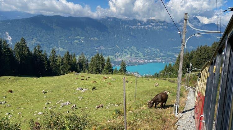 Vereinsreise der Volkstanzgruppe Eggenwil