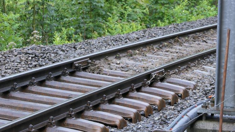 Der Zug fällt aus. (Bild: Leserreporter)