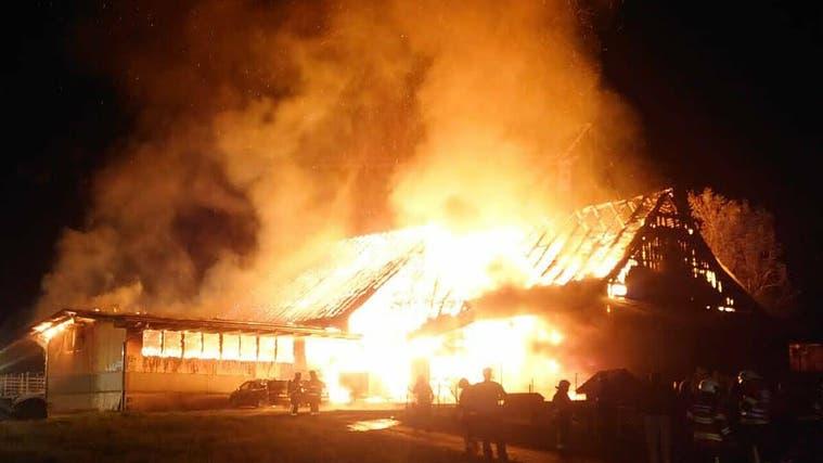 Am Montag, 20. September 2021, ging bei der Kantonspolizei Schwyz kurz nach 21 Uhr die Meldung ein, dass in einem Stall am Chlösterliweg in Trachslau ein Brand ausgebrochen sei. (Leserreporter Bote der Urschweiz)