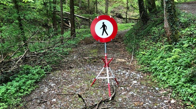 Die Strasse im Wissenbacher Tobel in Boswil wird nicht mehr instand gesetzt, nachdem sie wegen des Hochwassers verschüttet wurde. Spazieren gehen kann man hier aber schon bald wieder. (zvg/Michael Weber)