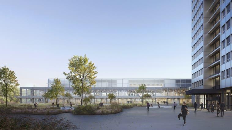 Auf dem Firmenareal von DSM in Kaiseraugst entsteht der Campus – so sieht der Bauplatz im Moment aus. (zvg)