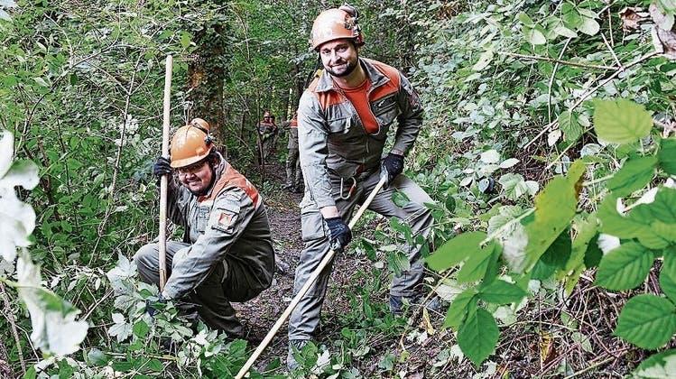Zivilschutz reparierte Weg im Biberhölzli hinauf zum Burgstock: «Schön, der Stadt einen Dienst erweisen zu können»