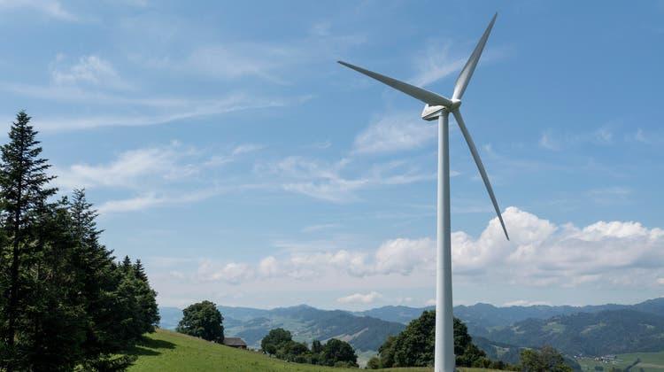 Roland und Priska Wismer stehen genau dort, wo eins der Windräder gebaut werden soll. (Bild: Dominik Weingartner)