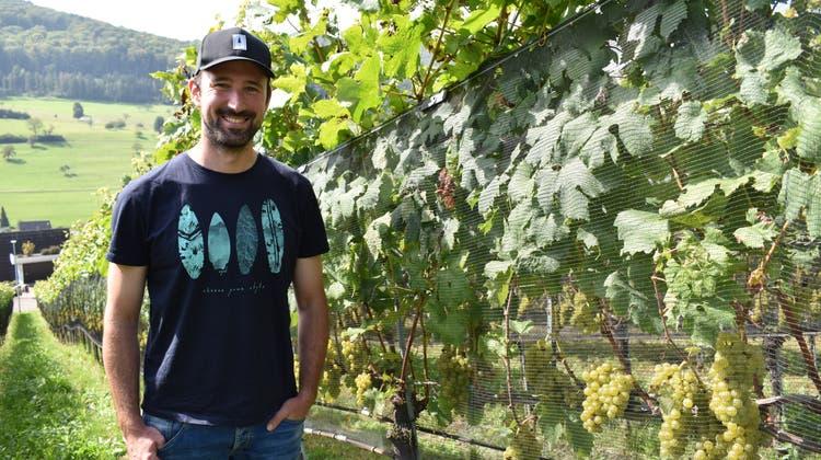 Freut sich über den Sonnenschein über seinen Reben: Daniel Jeck, Winzer aus Zeiningen. (Nadine Böni / Aargauer Zeitung)