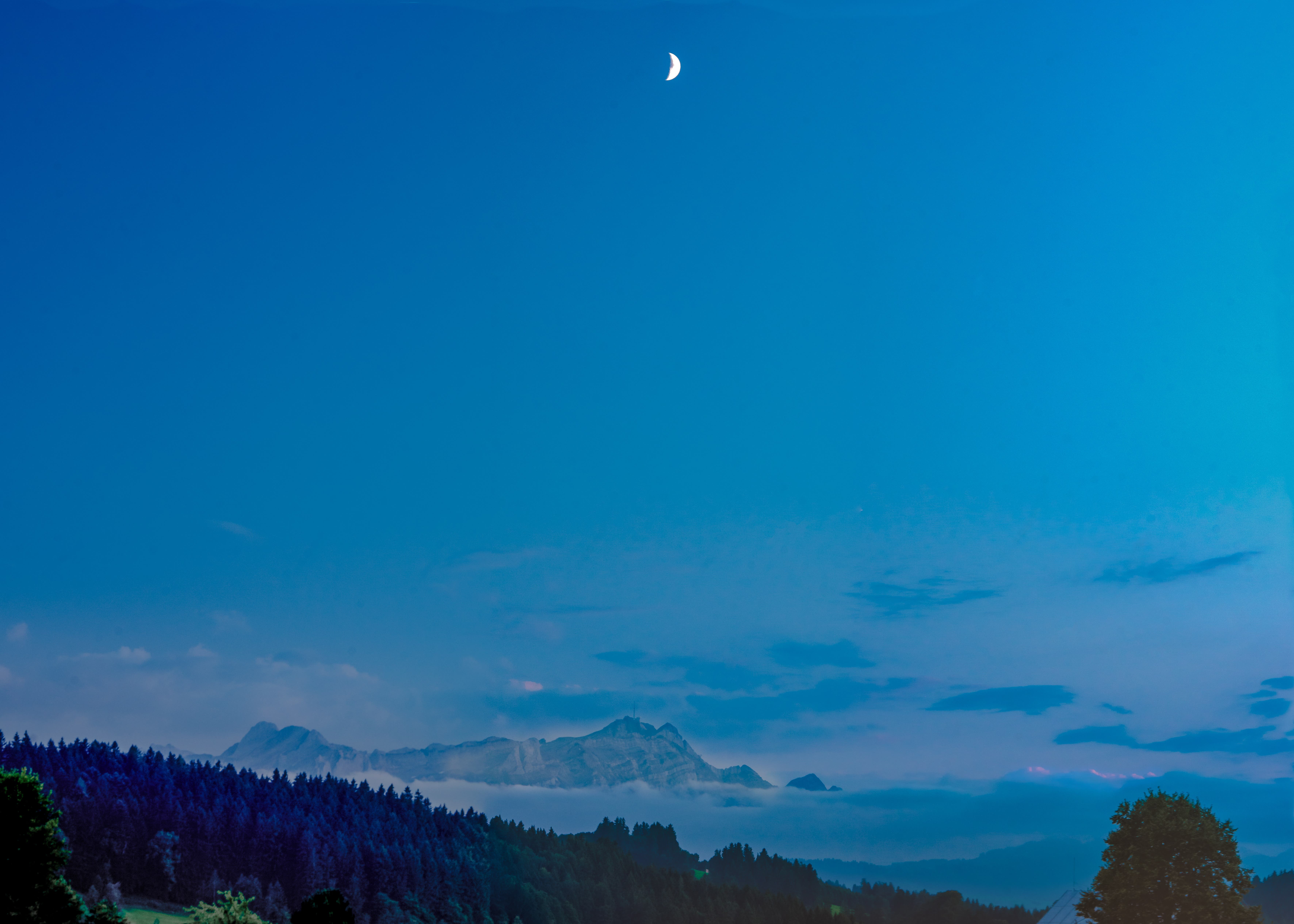 «Blue Mountains»