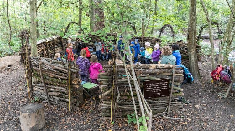 «Hier können sie mit allen Sinnen lernen»: Der Waldkindergarten ist im zweiten Jahr so richtig angekommen