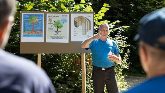 Waldpflege zwischen Ertrag und Schutz – der Waldgang in Holderbank