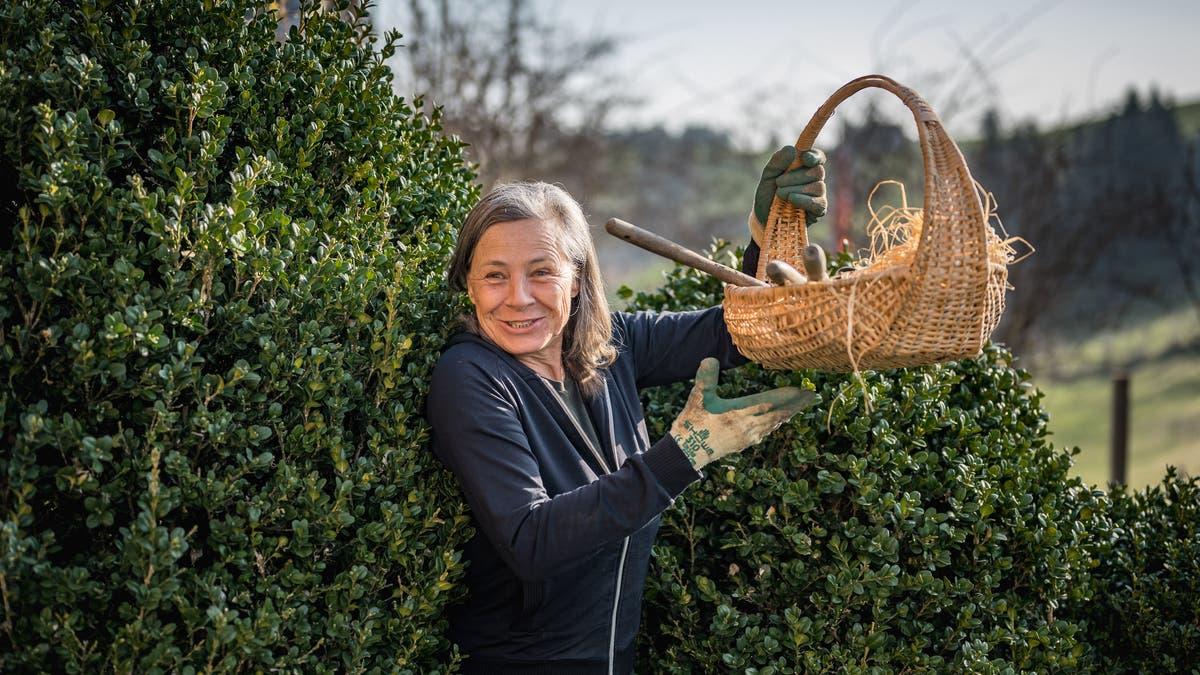 Frühling in «Monikas Garten»: Wir setzen Zwiebeln und Salate