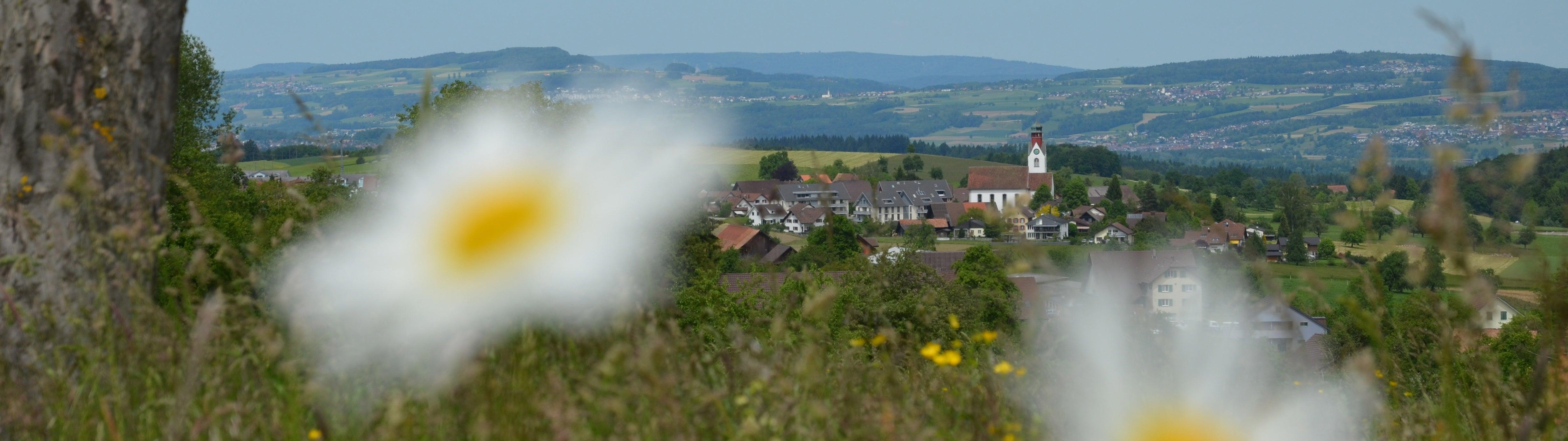 Beinwil (Freiamt)