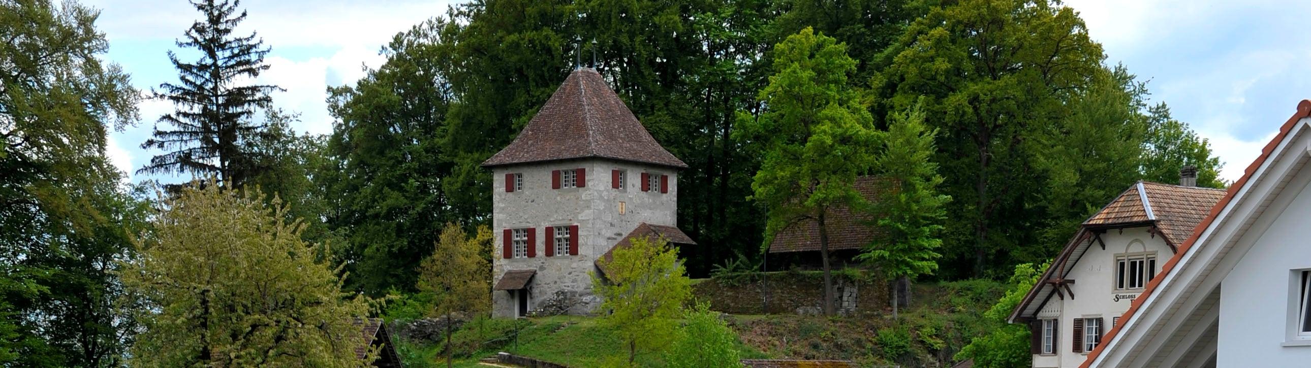 Kyburg - Buchegg