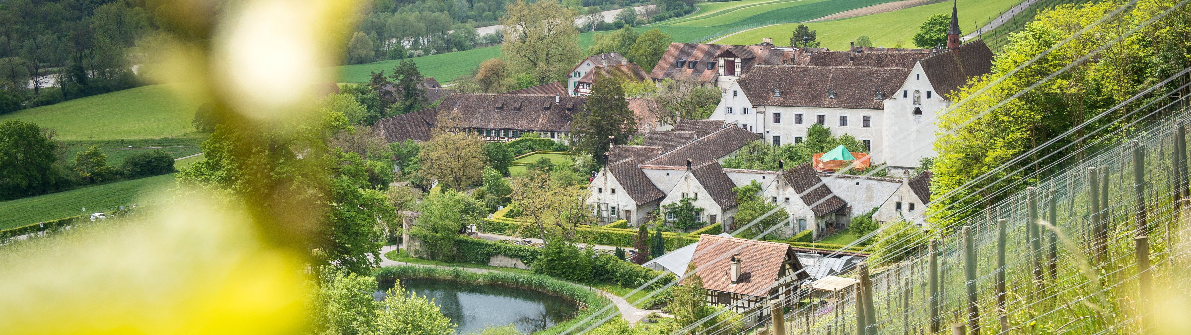 Warth-Weiningen
