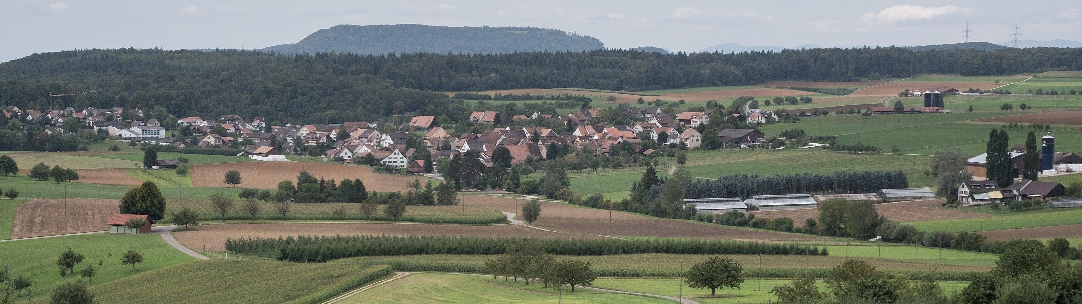 Wenslingen