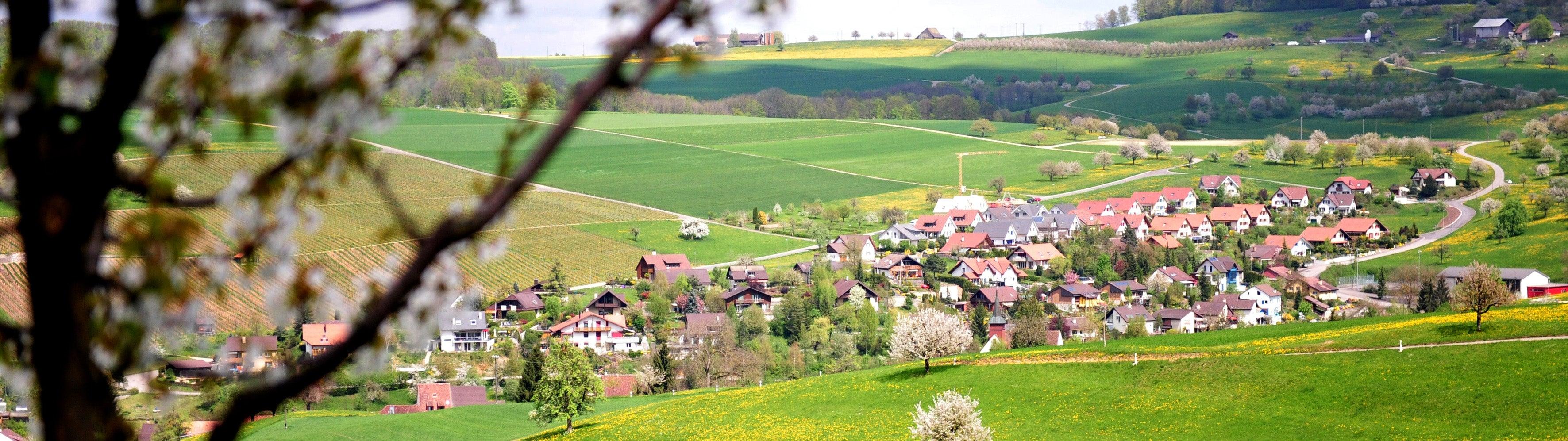 Wintersingen